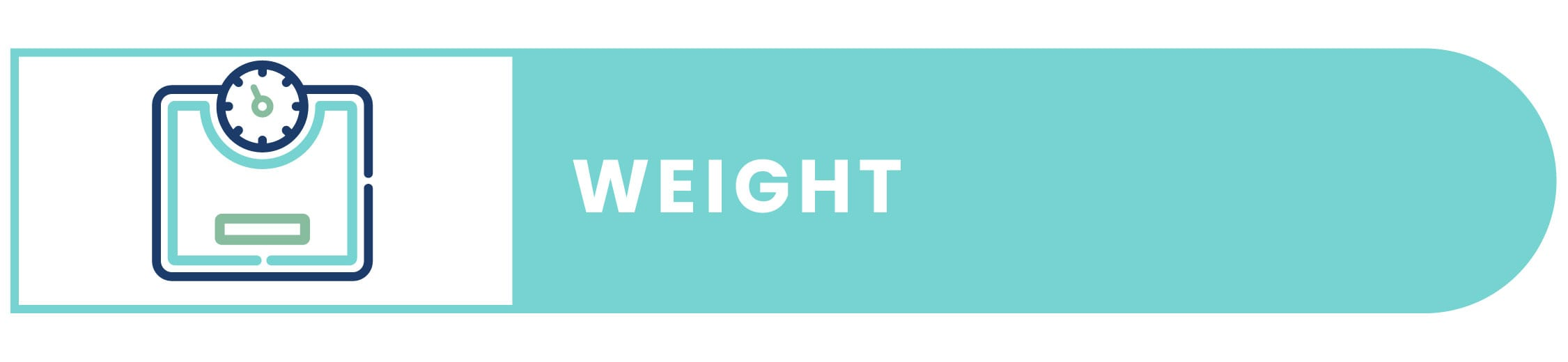 Electric Bike Weight icon